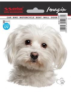 Naklejka - Pies Maltańczyk 11X12Cm