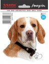 Naklejka - Pies Beagle 11X11Cm